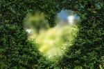 Miłość w Zodiaku - trygon Ziemi